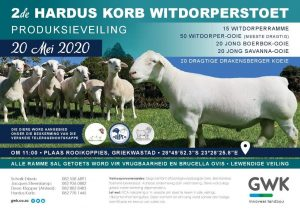 Hardus Korb 2nd Production Sale @ Griekwastad