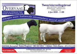 Overvaal Club Sale @ Rustenburg